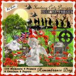 FCD Remembrance Day