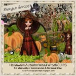 Halloween Autumn Wood Witch Cu FS
