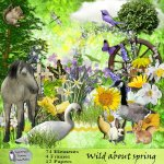 Wild about spring