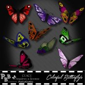 Colorful Butterfly's