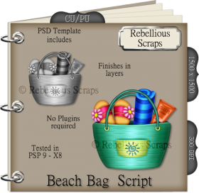 Beach Bag Script