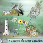 Summer vacation clusters