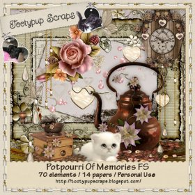 Potpourri Of Memories PU FS