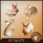 CU Vol. 075 Rabbit Bunny by Lemur Designs