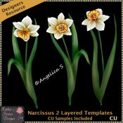Narcissus 2 Layered Templates CU