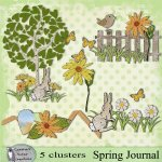 Spring Journal clusters