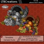 Harvest Fruit Template and tube
