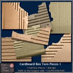 Cardboard Box Torn Pieces 1 CU
