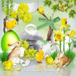 Welcome to Spring by Lemur Designs