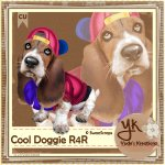Cool Doggie R4R