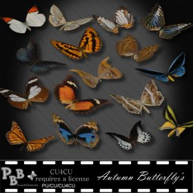 Autumn Butterfly's