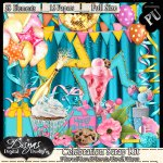 CELEBRATION SCRAP KIT - FULL SIZE