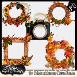 THE COLORS OF THE AUTUMN CLUSTER FRAME PACK - FS